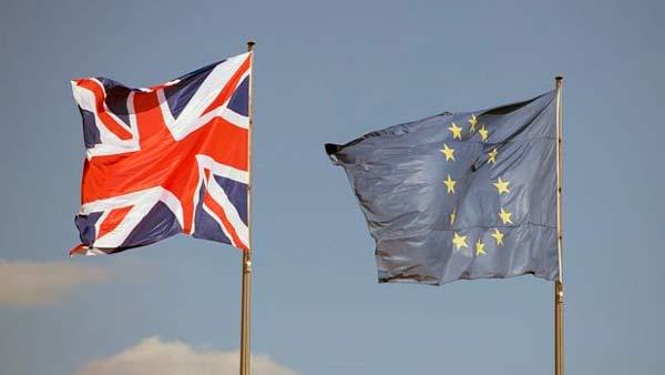 Artículo 13: El Reino Unido contribuye a la aprobación