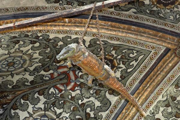cocodrilos disecados en los techos de las iglesias